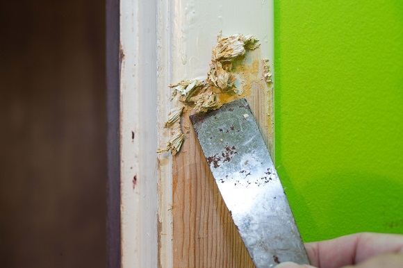 paint-stripper-and-varnish-removers