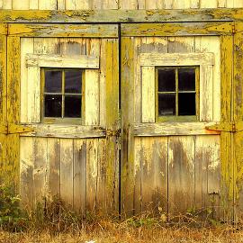 Ancient wooden barn doors