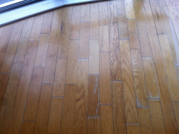 Canadian Red Oak Flooring