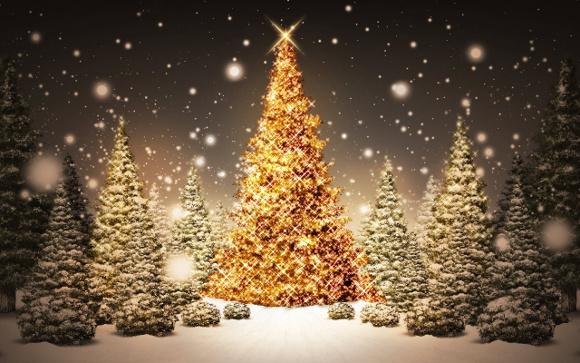 Seasonal Christmas Trees and Snowflakes