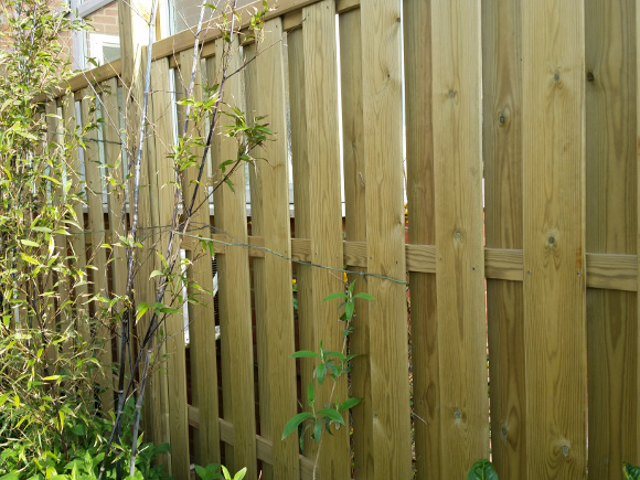hit-and-miss-wooden-fencing