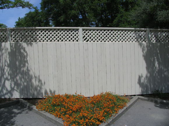 All about fence paint and how to create something special