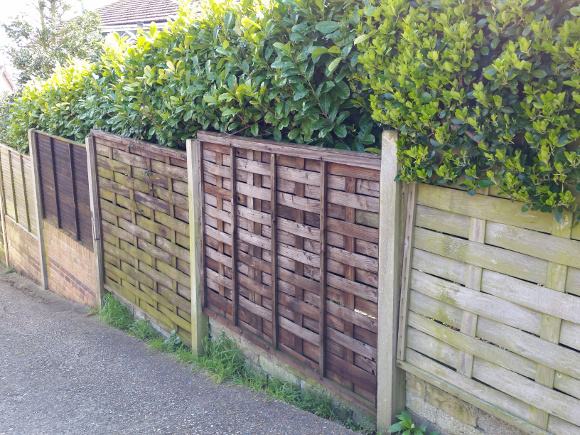 Wooden Fencing with Hedge