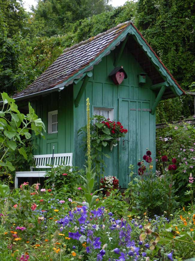 Colourful garden retreat amongst flowers