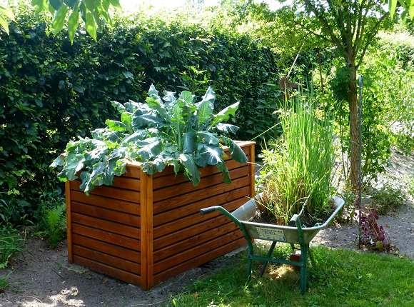 wooden-raised-vegetable-bed-stained-and-sealed