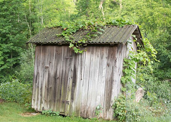 Old garden shed suffering from rot and decay