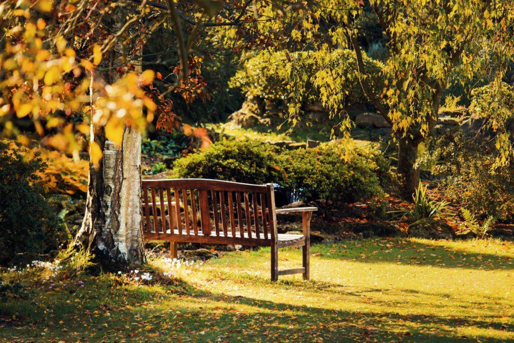 introvert-garden-bench