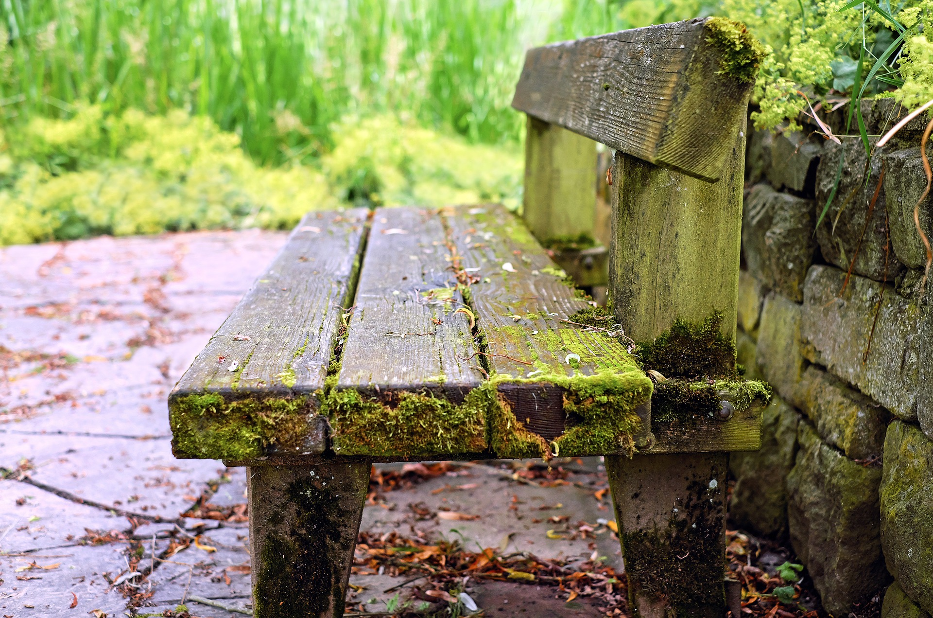 weathered-bench