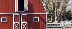 Barn Finishes