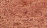 Barrettine Wood Preservative Exterior Wood Preserver For All Wood Types